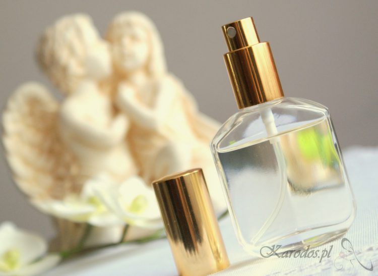 Perfumy Orlean – Calvin Klein Obsession Night (No 098)