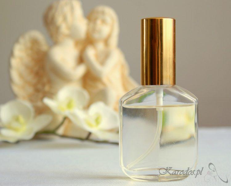 Perfumy Orlean – Calvin Klein Obsession Night (No 098)