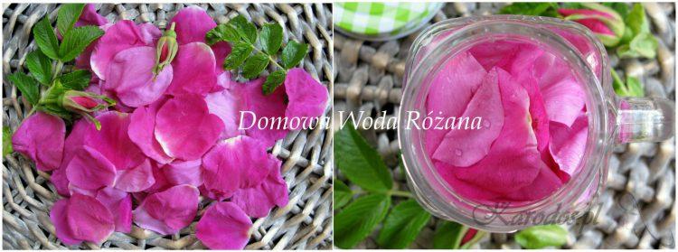 najprostsza domowa woda z platkow roz